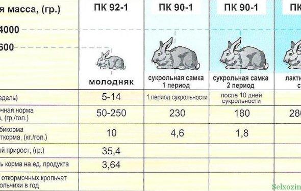 Схема откорма кроликов