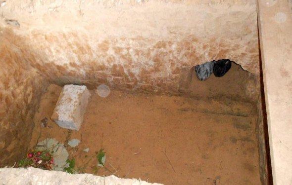 Открытая яма для кроликов с